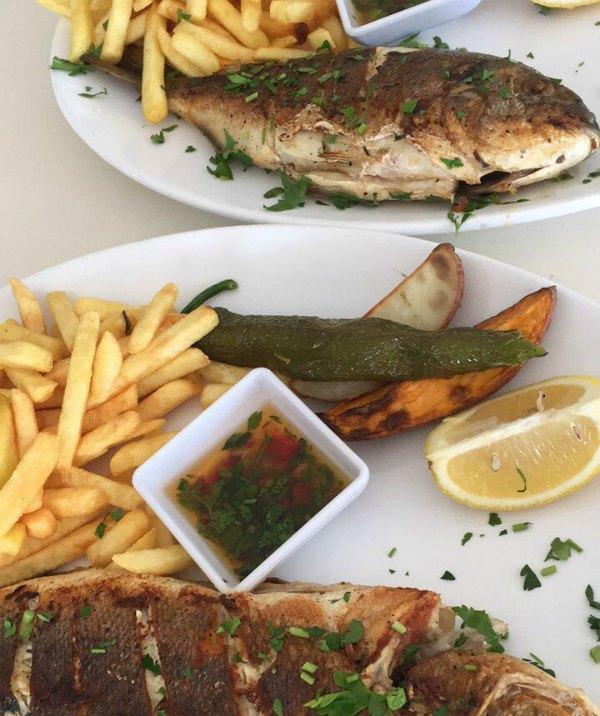 ארוחה מן הים